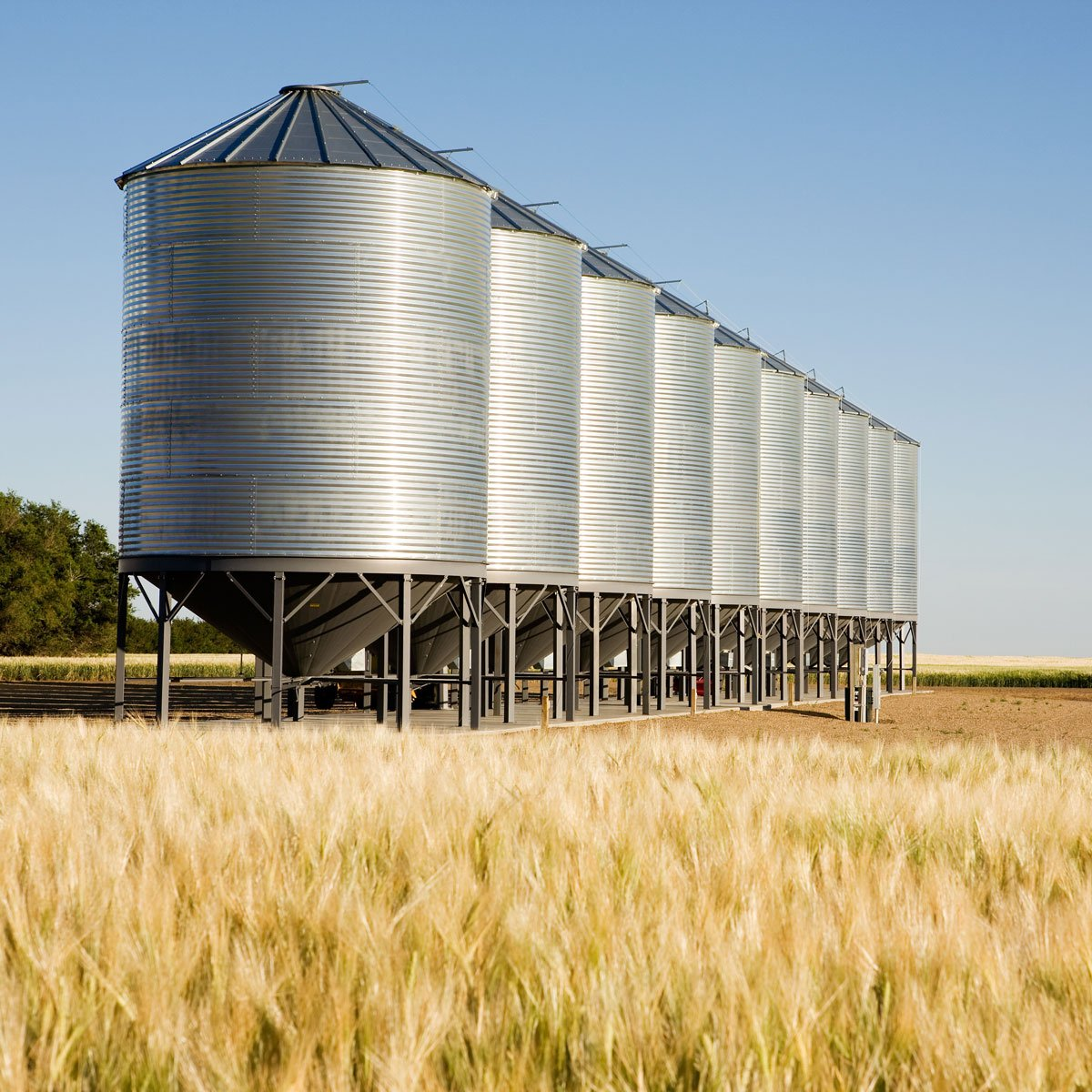 Bulk storage bins in field