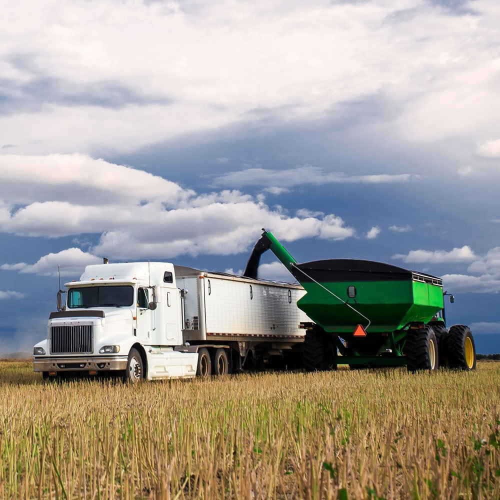 Grain cart and truck in field